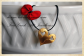 heart_pendant_925_silver_lakasa_e-shop_jewelleries_gold-plated